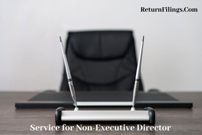 services for non executive director, director qualification, board meeting agenda and minutes preparation, appoint and resign